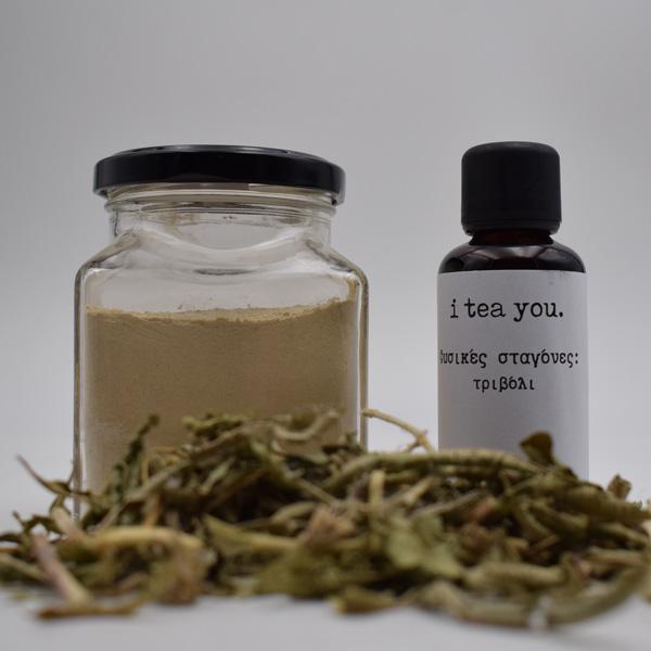Βάμμα τριβόλι, σκόνη Maca, τσάι με επιλόβιο, τριβόλι, αγριάδα, λουίζα